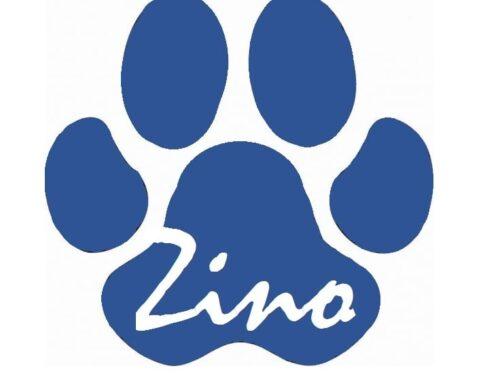 Stichting Zino, Herplaatsing & Bemiddeling van Honden bestaat 5 jaar!