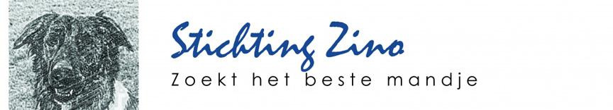 Stichting Zino Logo