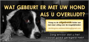 Wilsverklaring Stichting Zino